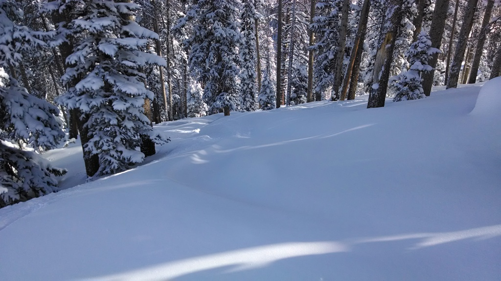Powder skis, ski rental, Mary Jane, Winter Park, Snowboard Rental, Ski Rental